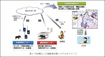 長崎県五島市が導入した鳥獣害対策システム イノシシ捕獲数が前年度比5.4倍に